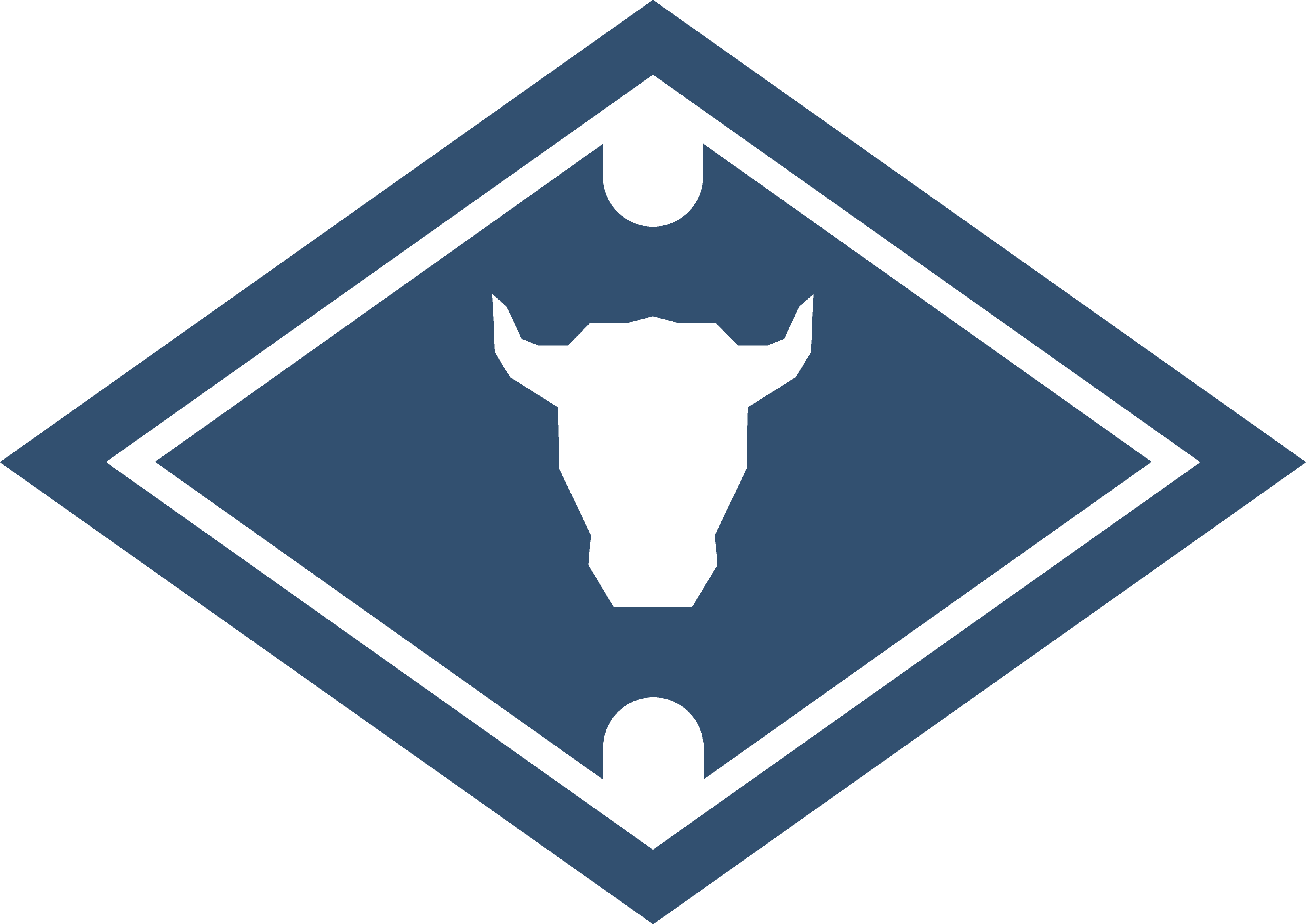 hkn logo